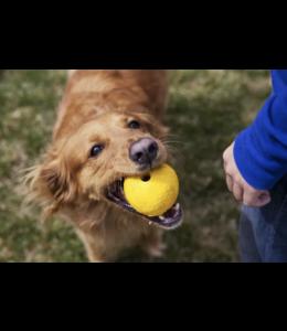 Ruffwear - Hundespielzeug HUCKAMA™