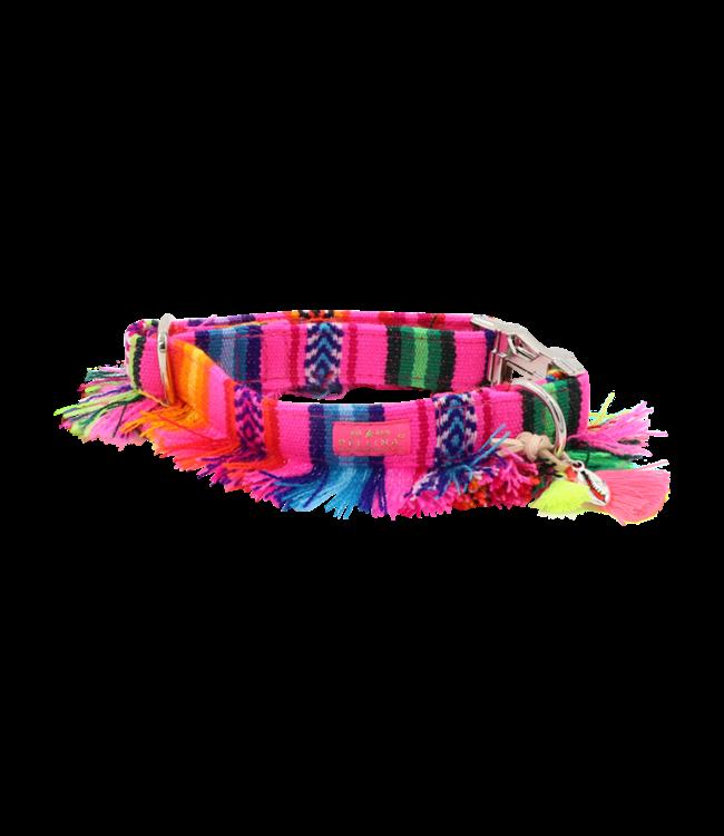 Pellina -  Hundehalsband LaaVida Sol Neon Pink