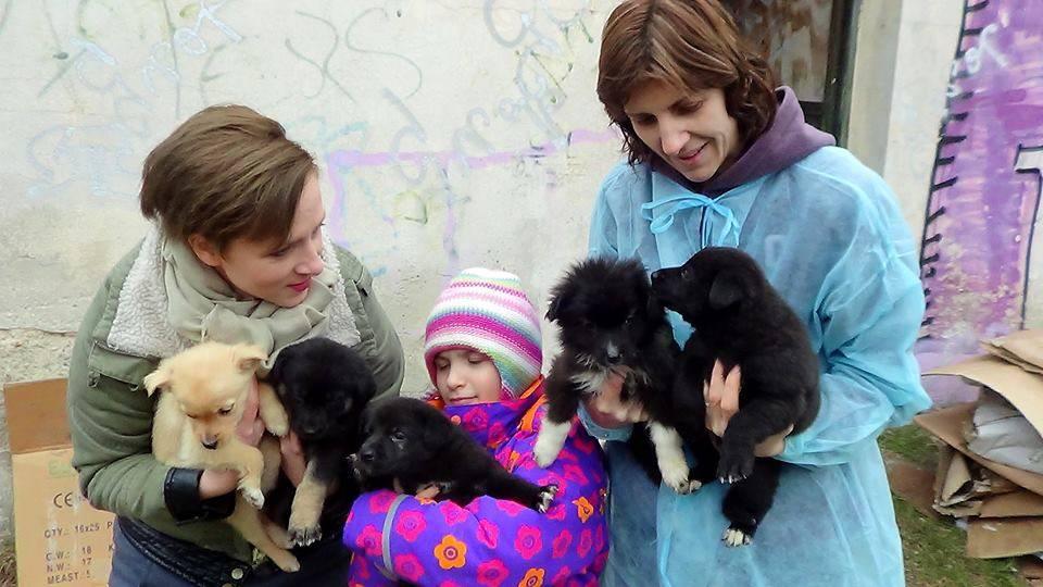 Flöckchens Hundeladen rettet 2 Welpen in Bucharest vor dem Tod