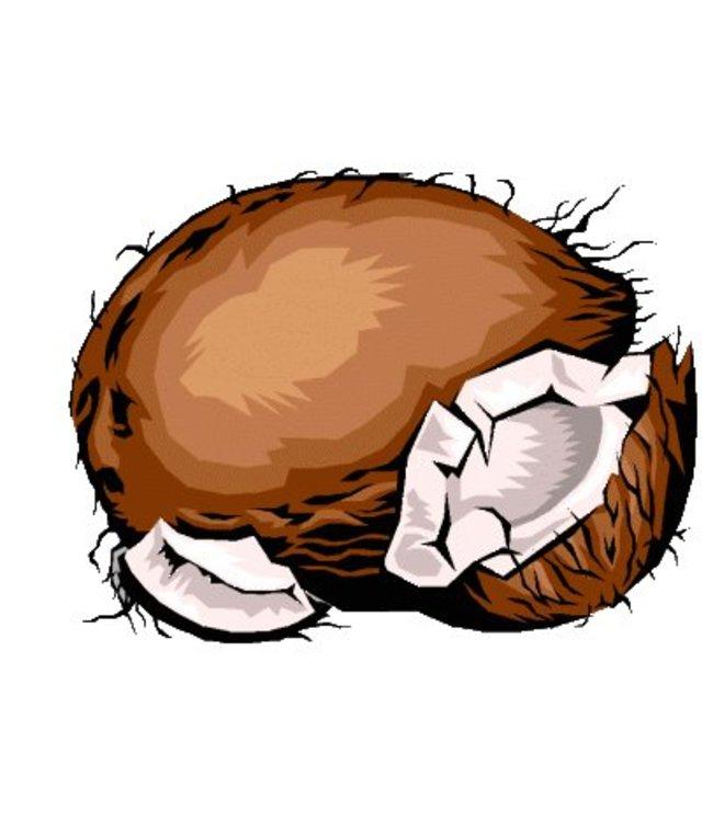 Kokosraspel 200g