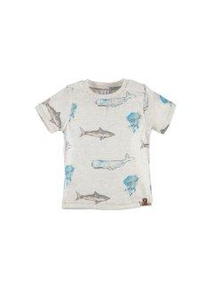 Babyface  Babyface boys t-shirt sh.sl. COOL GREY MELEE