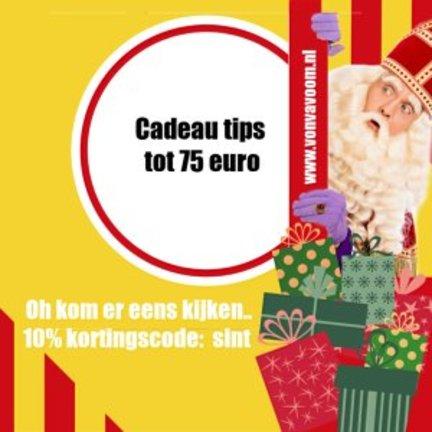 Sinterklaas cadeau tips tot 75 euro