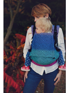 Little Frog Little Frog toddler carrier Dark Aurora Cube