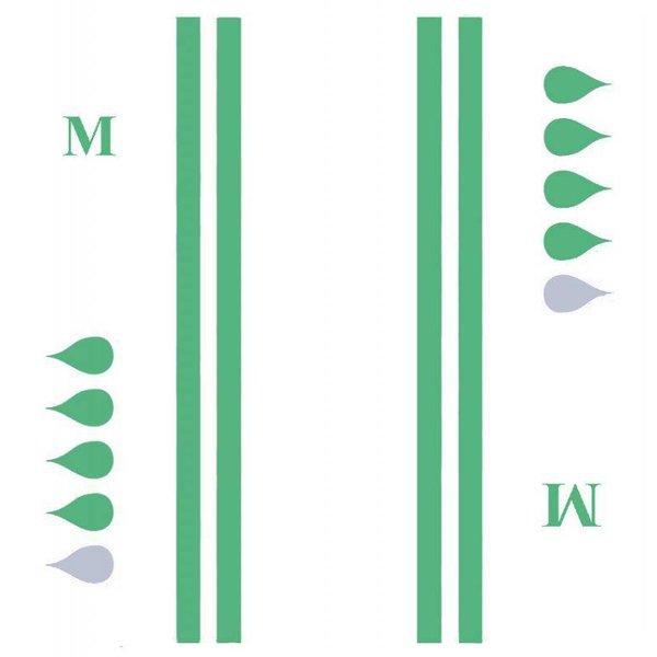 Slip 'Super' - vert 4 x 20 pièces