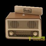 Retro radio met 1 bedieningsknop