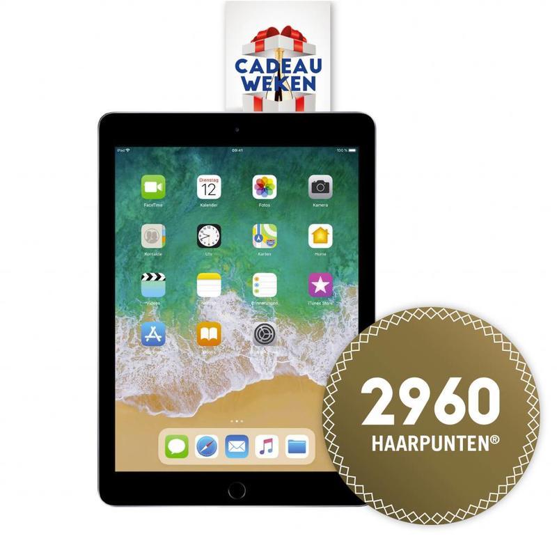 2960 HP   Apple iPad 2018 32GB WiFi
