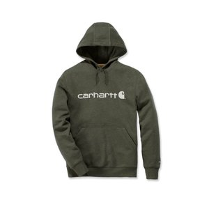 Carhartt werkkleding Force Delmont Graphic Hooded sweatshirt