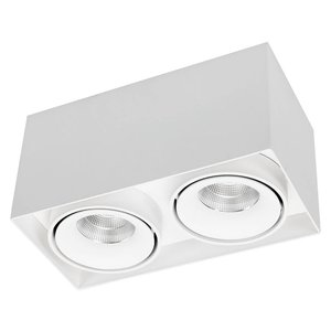 R&M Line Double light LED surface mounted spot in white