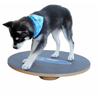FitPaws Wobble Board 50cm (pup)