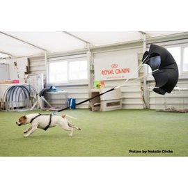 K9 Disc Canine Training Parachute