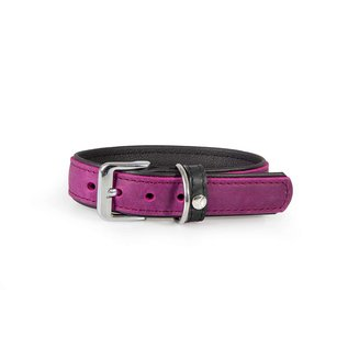 Das Lederband Leren Halsband Violet/Zwart - Vancouver - B:25mm L:35cm - Verstelbaar 23-29cm