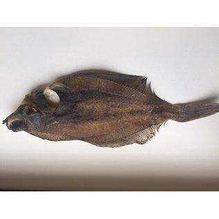 iceborders Plattfisch getrocknet - 500gr