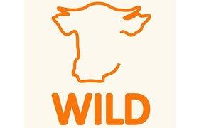 Wild kidswear