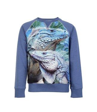 Wild kidswear Wild kidswear boys sweater Jake iguana