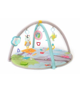 Taf Toys Taf Toys Musical nature baby gym