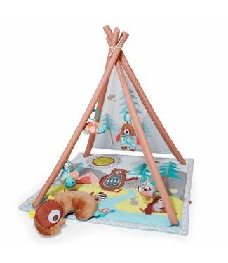 Skip hop Play mat Camping cubs