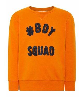 Name-it Name-it jongens sweater NANOK mini Autumn Maple