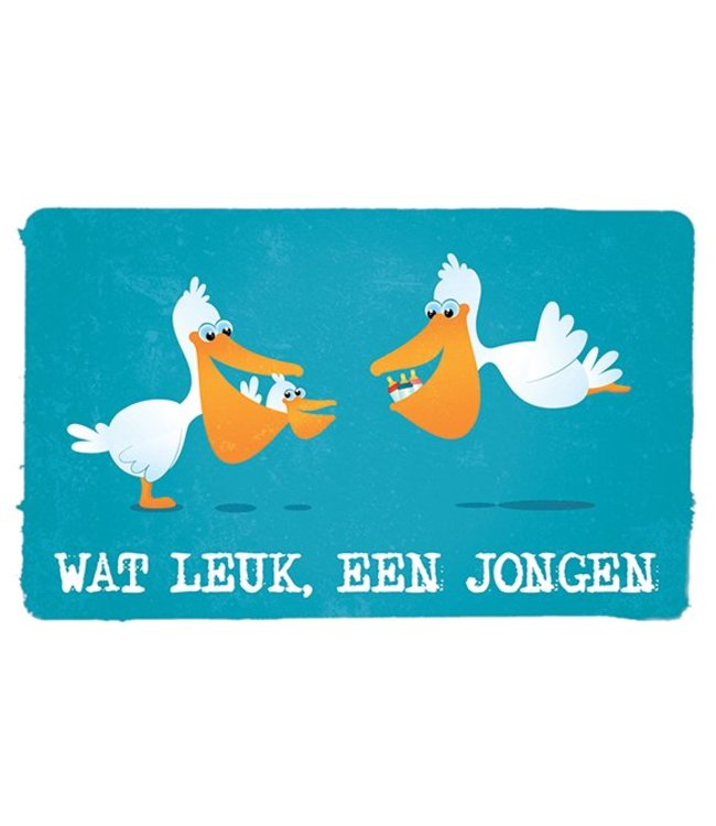 Leukekaartjes Greeting card - birth What fun a boy