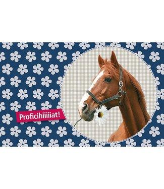 Leukekaartjes Wenskaart - Paard Proficihiiiat