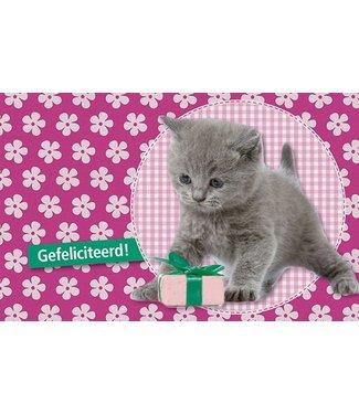 Leukekaartjes Wenskaart - Kat Gefeliciteerd