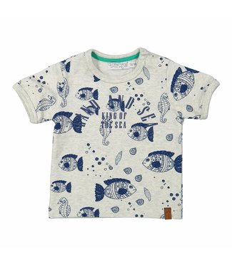 Dirkje kinderkleding Dirkje boys tshirt Land and sea