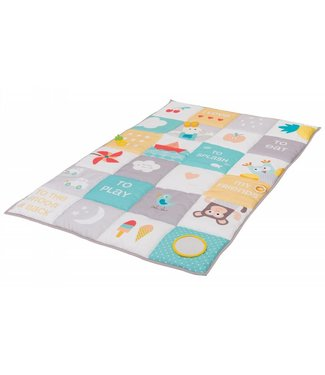 Taf Toys Taf Toys baby playmat I love big mat soft colors