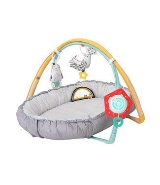 Taf Toys Taf Toys baby Musical newborn cozy gym