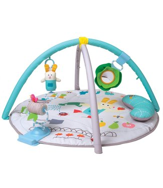 Taf Toys Taf Toys baby play mat Garden tummy time gym