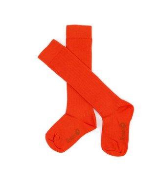 Lily Balou Lily Balou knee socks Jordan Tangerine Red