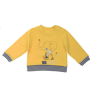 Babybol Babybol jongens gele sweater Mr. Elephant