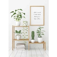 All I want is the taste that your lips allow - Tekst poster - Wanddecoratie - Zwart wit poster