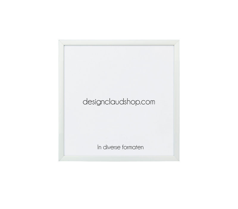 Aluminium wissellijst - Fotolijst - Mat zilver