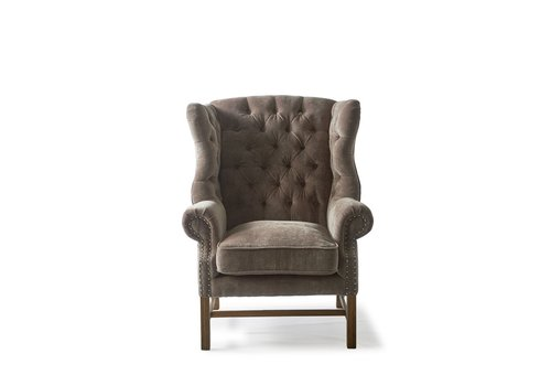 Homestore Franklin Park Wing Chair, Velvet, Dolphin