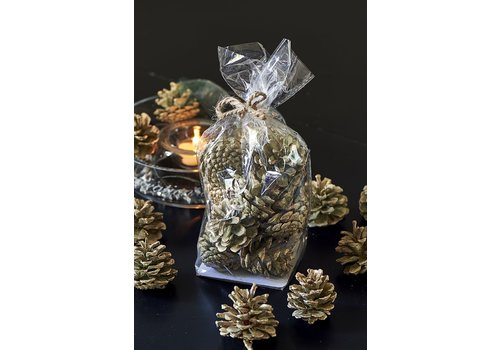 Homestore Aspen Pinecones Sparkly green