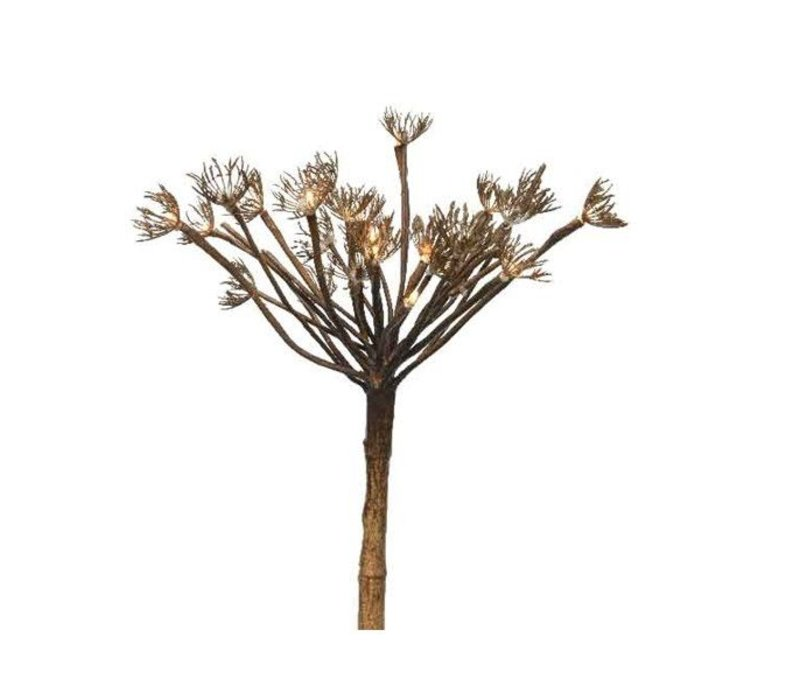 LED hogweed in brown with warm white LED's (15 lights)