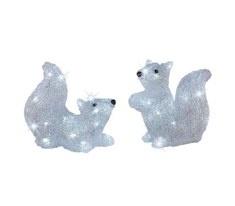LED acrylic squirrel outdoor - 2 assorted - 20 lights