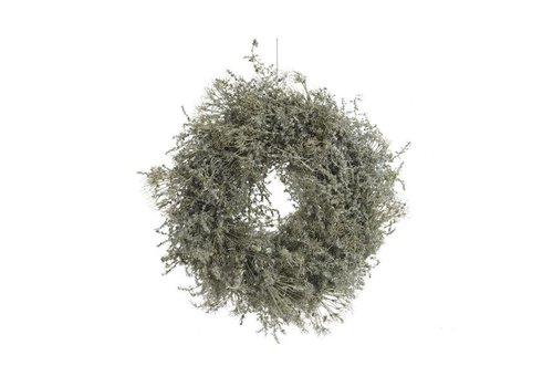 Christmas asparagus wreath waxed in green - dia 35cm
