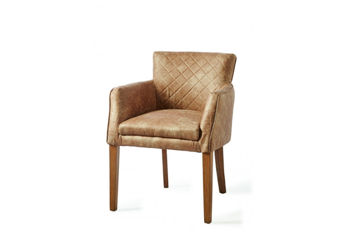 Homestore Waverly Dining Armchair pellini Cam