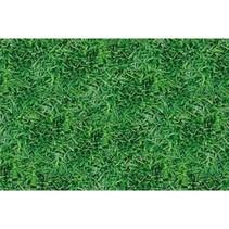 Tafelkleed Gras 259x137cm