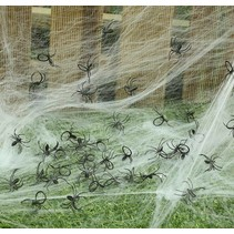 Nep Spinnen 2cm 50 stuks (NO3-6-5)