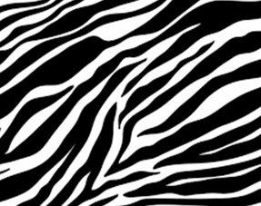 Zebra Versiering