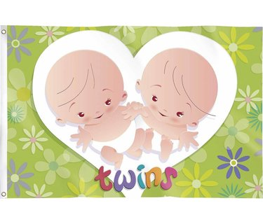 Geboorte Versiering Tweeling