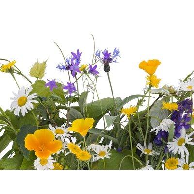 Alpine herbal perfume