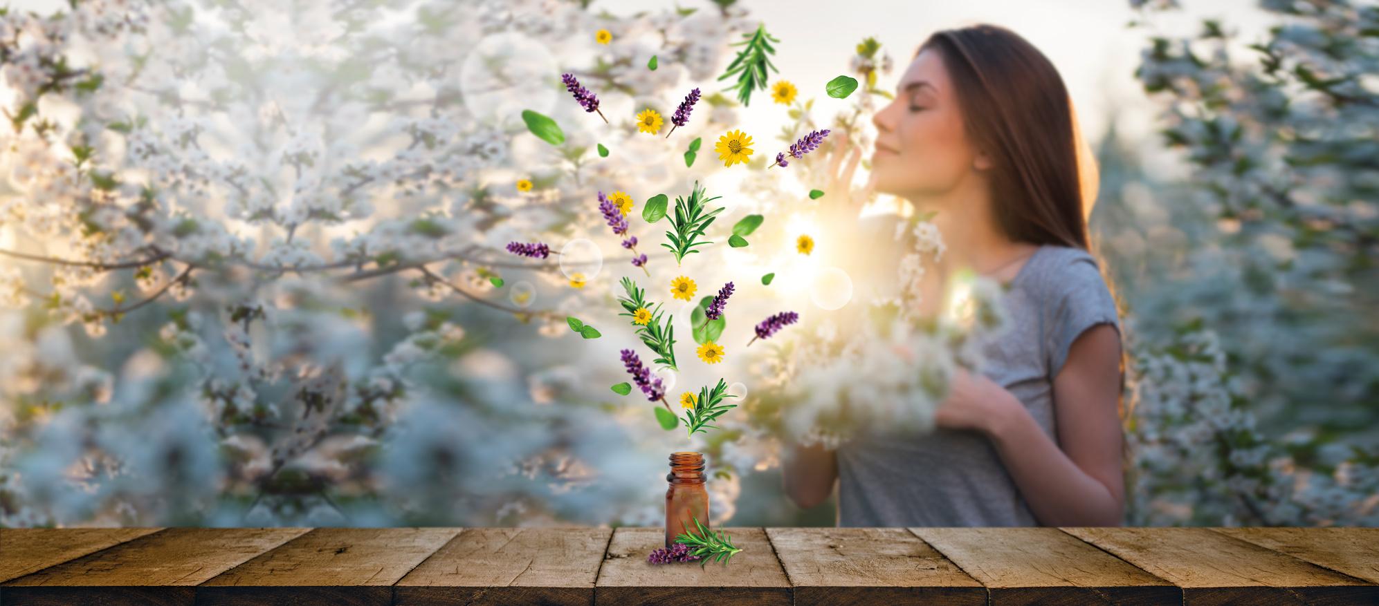 Aromatherapie geuren met geurverstuivers voor iedere branche