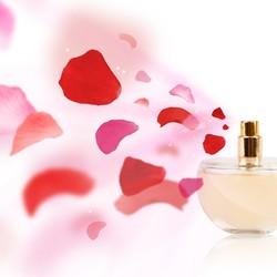 Producten voor de geur