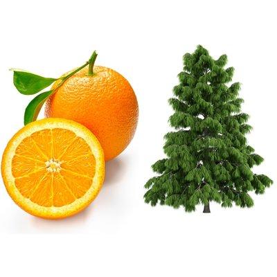 Parfum d'interieur  Bois de cèdre orange