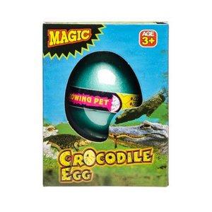 Groei-ei Krokodil ( VOORRAAD 32 STUKS OP=OP)