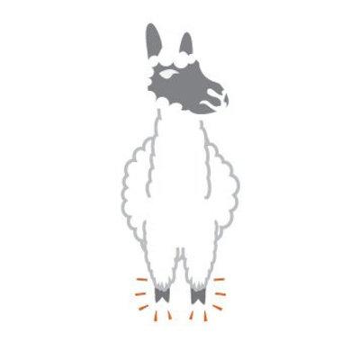 Wandelwol Wandelwol antidruk-wol Alpaca 20 gram lanoline-vrij