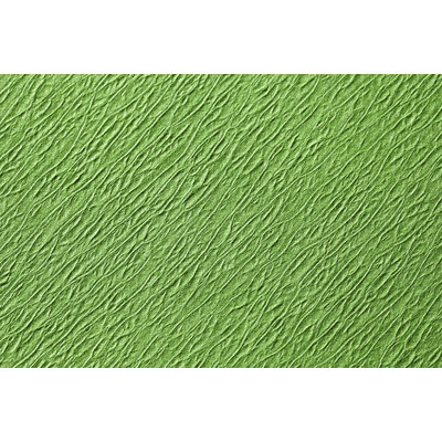 Traypapier Touch of colors fresh green