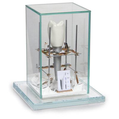 Kunst Vitrine 'Implantaat'